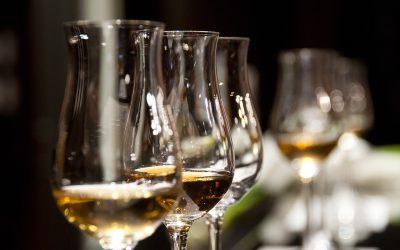 O Wine Summit chega a cascais em junho
