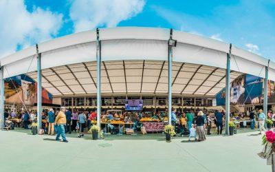 Mercado da Vila em Cascais comemora aniversário com noite de fado