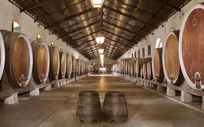 Rota dos vinhos de Lisboa: Carcavelos, Colares e Bucelas